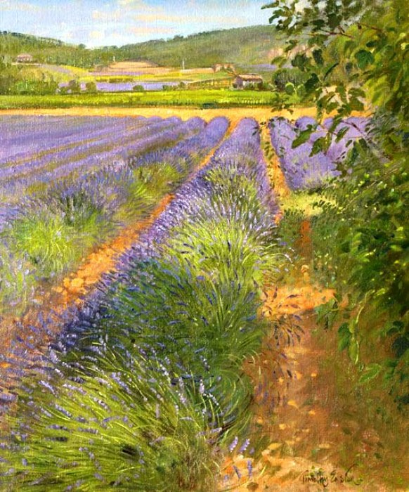 Симфония беспечного цветенья... Британский художник Timothy Easton